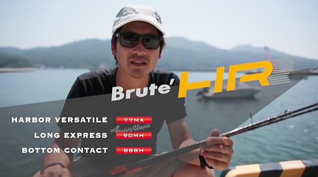 bruteHR