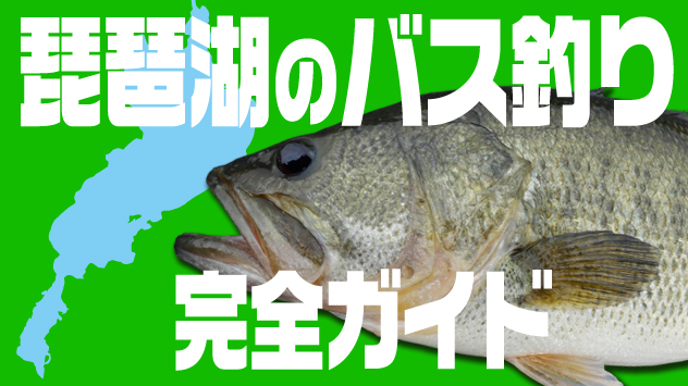 琵琶湖のバス釣り完全ガイド