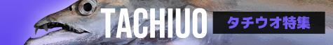 タチウオ特集2021